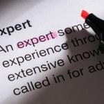 Expert — Stock Photo #31174381