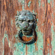 Door Knocker — Stock Photo #31238433