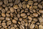 Coffee beans — Foto de Stock