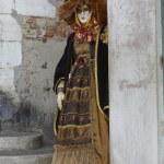 Venice Carnival — Stock Photo #19221415