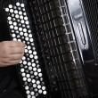 Accordion Player — Foto Stock