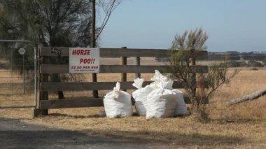 Horse Poo — Stock Video