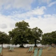 Hyde Park Timelapse - Stock Photo
