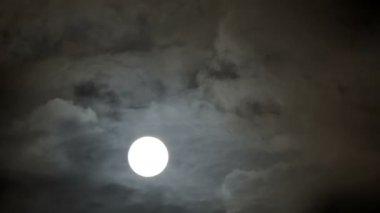 La luna de noche — Vídeo de stock