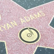Walk of Fame Bryan Adams — Stockvideo