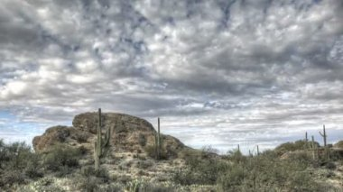 HDR Timelapse Javelina Rocks Saguaro NP Arizona — Stock Video