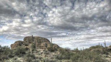 HDR Timelapse Javelina Rocks Saguaro NP Arizona — Stock Video
