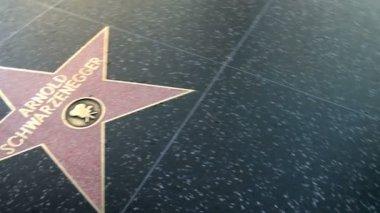Walk of Fame Schwarzenegger Garland — Stock Video