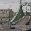 Budapest Freedom Bridge — Stock Video