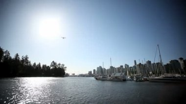 Waterplane flyover marina — Stock Video