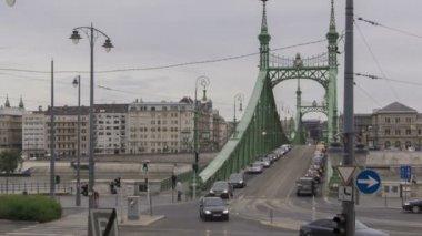 Budapest Freedom Bridge — Stock Video