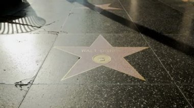 Walk of Fame Walt Disney — Stock Video