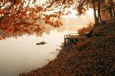 Mattina nebbiosa e fredda al lago — Foto Stock