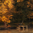Autumn lake — Stock fotografie #19484655