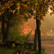 Autumn forest and lake - Stock Photo