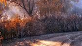 Frostat sjö i solnedgången — Stockfoto