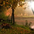 Landscape with lake and autumn forest — Stock Photo #24683411