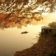 Foggy and cold morning at the lake — Stock Photo