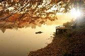 Dimmigt och kallt på morgonen vid sjön — Stockfoto