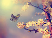 Vintage butterfly with flowers — 图库照片