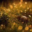 Macro view of a snail shell and dew covered grass — Stock Photo #24777273