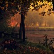 Landscape with lake and autumn forest. — Stock Photo