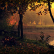 Landscape with lake and autumn forest. — Stock Photo #24780223