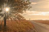 Strada di traffico solitario con raggio di sole nel tramonto. — Foto Stock