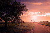 Asphalt road in sunset with ray of sunshine — Stock Photo