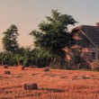 Lone house in sunet — Stock Photo