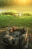 Open haard met idyllische vijver — Stockfoto