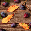 Plum on wooden table — Stock Photo