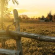 Farm in sunset — Stock Photo