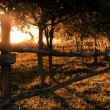 Farmland in sunset — Stock Photo