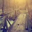 Bridge in the forest — Stockfoto