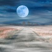 Mondaufgang über asphaltstraße — Stockfoto