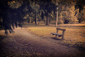 Bench in autumn forest — Stock Photo