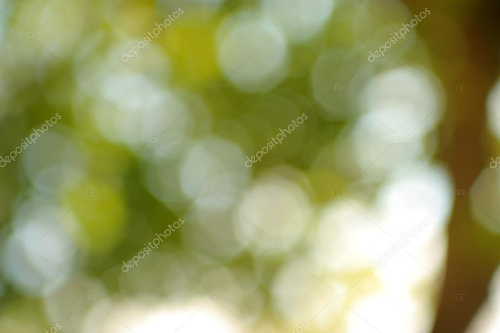 模糊的風景 — 圖庫照片08balazskovacs#34559009