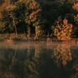 Natural autumn scene with lake — Stock Photo