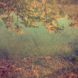 Stock Photo: Antique photo of autumn impression