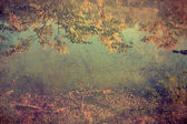 Antique photo of autumn impression — Stock Photo