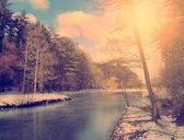 винтаж фото сцены идиллический зима — Стоковое фото