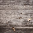 Wooden — Stock Photo #21825499