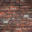 Brik wall — Stock Photo #21954917