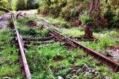 Abandoned railway — Stock Photo