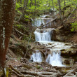 Spring waterfall — Stock Photo