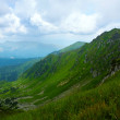 Carpathians in summer — Stock Photo #29528189