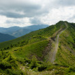 Carpathians in summer — Stock Photo #29528365