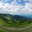 Carpathians in summer — Stock Photo #29528453