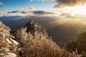 Hillside Demerdzhi — Stok fotoğraf